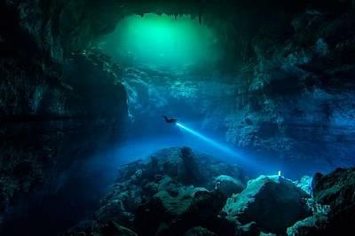 Подводният свят през обектива на Your Shot