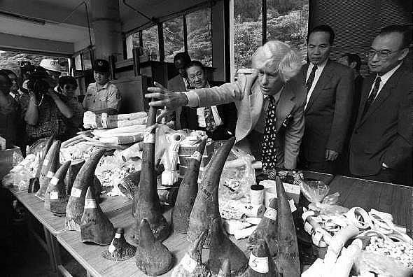 Езмънд Брадли Мартин оглежда конфискувани рогове от носорози и слонова кост в зоопарка в Тайпе, Китай през 2004 г. в ролята на пратеник на Обединените...