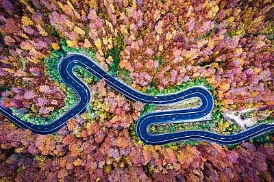 Криволичещ път през гората Богата в Румъния