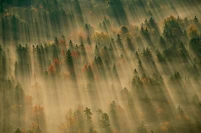 """Есенна гора в националния парк """"Акадия"""", Мейн"""