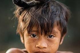 Дете от племето ава със своя домашен любимецПодобно на много племена в Амазония групата ава също приемат диви животни за домашни любимци, като особено...