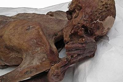 При обикновена светлина детайлите не личат добре.Когато мумията била намерена през 1900 г. татуировката е била мислена за петно.