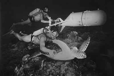 Снимки от зората на подводното изследователство