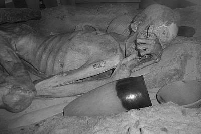 Човека от ГебелейнНа това инфрачервено изображение се вижда мумията на мъж, известна като Човека от Гебелейн. Има татуировки на ръката.
