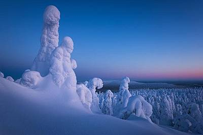 Хълм в ЛапландияТози хълм в Лапландия представлява друг свят. Снежните призраци са навсякъде, ние сме само посетители. Март 2016, Финландия. &nbs...