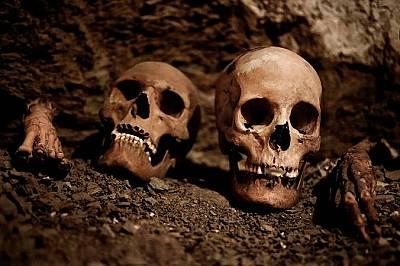 В гробницата са намерени черепи, мумии, керамика и други артефакти.