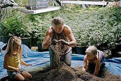 Внучета помагат на баба си в производството на канабисВнучета помагат на баба си в семейния бизнес. Семейството произвежда кремове и мехлеми с канабис...
