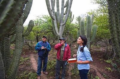 Куелар разглежда кактуси с биолозите Алехандро Арамбизаанд (вляво) и Жоакин Бариентос край Япиора, Боливия.