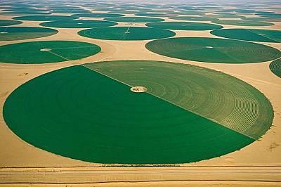 Зелени кръгове, с диаметър над 800 метра, сред пустинята в Саудитска Арабия. Подхранват се от дълбоки кладенци вода.