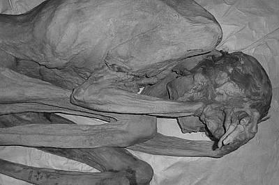 Мумуята на Жената от ГебелейнМумуята на Жената от Гебелейн също е била разгледана под ултравиолетова светлина.