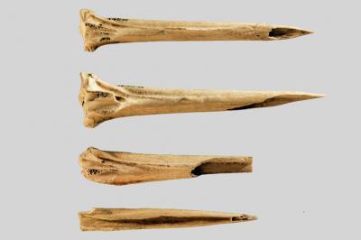 В щата Тенеси откриха най-древните инструменти за правене на татуировки