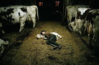 Ферма в Ню Брунсуик, КанадаМомче спи до кучето си във ферма в Ню Брунсуик, Канада.