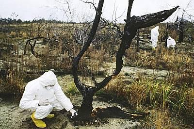 Дългосрочните последици от катастрофата в Чернобил