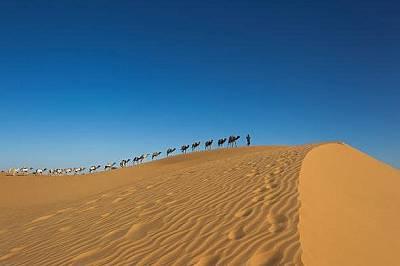 Керван, натоварен със сол, приближава Тимбукту.Ръкописите били изнесени контрабандно през 965 километра пустиня до Бамако, столицата на Мали.&nbsp...