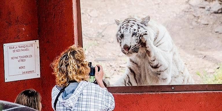 ОТ NATASHA DALY, National Geographic