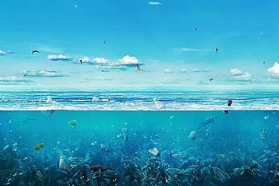 Тревожни факти за замърсяването с пластмаса