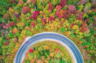 Есента отвисоко - галерия (част I)