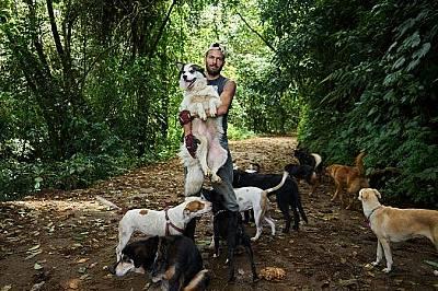 В земята на хилядите бездомни кучета