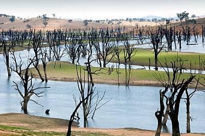 Язовирът Лейк ХюмПо-голямата част от Виктория и Ню Саут Уелс в Австралия страдат от невероятна суша. Нивото на реките спада значително, а язовирите са...