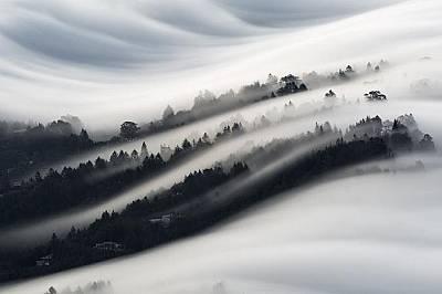 Мъгла се стели над квартал в Мил Вели, Калифорния.