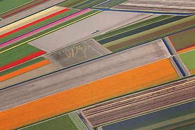 Нортийст Полдър, Холандия