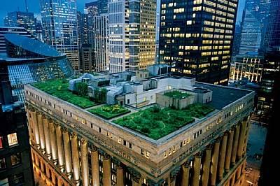 Короната от зеленина, увенчаваща сградата на Градския съвет в Чикаго, смекчава строгите черти на този град от стомана и камък и понижава температурата...