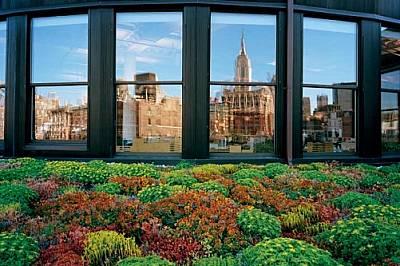 """""""Емпайър Стейт Билдинг"""" в Ню Йорк се отразява в прозорците на архитектурната фирма Cook + Fox (вдясно). Работещите в нея специалист..."""