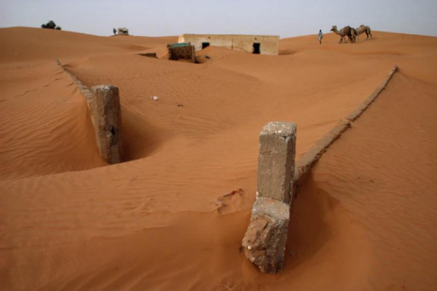 Погълнато от пясъкаПреди пясъкът от пустинята да ги погълне, стените около тази ферма в Мавритания бяха с височина 1,2 м. Прекомерната паша и...
