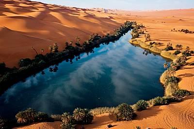 Подхранвани от подпочвен водоносен пласт, финикови палми и тръстики ограждат бреговете на Ум ал Маа - едно от дузината солени езера в пясъчното море У...