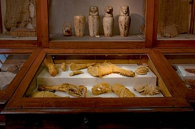Изложеното в Египетския музей в Кайро мумифицирано месо било приготвено да засити царските особи в отвъдното. Патици, говежди бутове, ребра, бифтеци и...