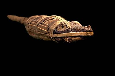 Оброчните мумии, всяка една погребана с молитва, предлагат безкрайно разнообразие, но невинаги са това, което изглеждат. Лукавият крокодил е фалшифика...