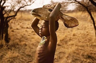 Всеки пренася нещо от мястото на лова до лагера. Капала носи глава на антилопа куду, подпряна върху своята. Групата, която включва голямото му семейст...