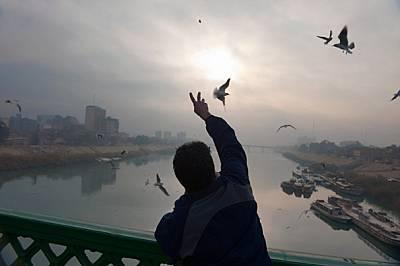 Багдад след бурята