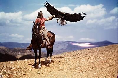 През 1939 г. Джул Маникс и съпругът й Дан купили Агила, белоглав орел, който бил пострадал при буря.
