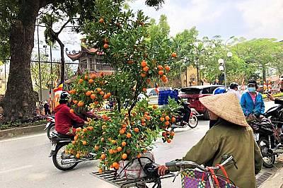 Забавно, пъстро, зареждащо и по драконовски стабилно – така се усеща Виетнам сега.