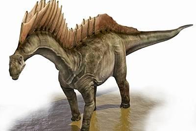 Чудати динозаври