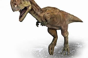 CARNOTAURUS Особени белезиРога, миниатюрни предни крайнициКогаПреди 82-67 млн. години КъдеАржентинаДа видим какво е сторила еволюцията с Carnotaurus,...