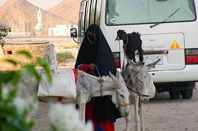 Някъде по пътя за Луксор - преходът от Хургада до Луксор беше от порядъка на 3-4 часа с автобус. По пътя спряхме да си починем в едно заведение, къдет...