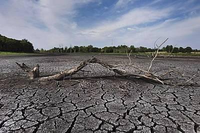 На 2 февруари отбелязваме Световния ден на влажните зони