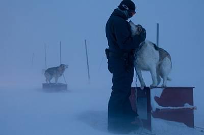 """Резервните кучета в станция """"Норд"""", които прекарват живота си на открито, са вързани достатъчно далеч едно от друго, за д..."""