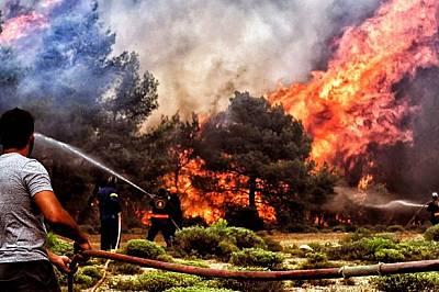 Едни от най-опустошителните горски пожари по света от началото на века