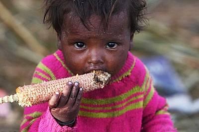 Доклад на ООН: Броят на недохранените в света нараства - всеки девети гладува