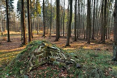Бехелн, Германия Само няколко каменни основи са се запазили от над 800 стражеви кули, изградени от римските войници по 550-километровата гра...
