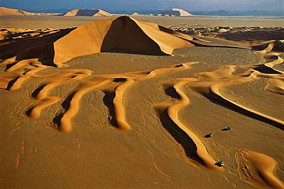 """Руб ал-Хали • Саудитска АрабияМладите дюни се вият като калиграфски надпис в Руб ал-Хали, в превод от арабски - """"пуст кр..."""