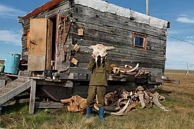 Владимир Потапов вдига череп на праисторически бизон от купчината кости до импровизираната баня край ез. Бустах.