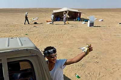 ЕгипетМлад бедуин в Западната пустиня показва екземпляр от сутрешния си улов: авлига, натрупала мазнини, преди да напусне Европа. Бедуините обикновено...