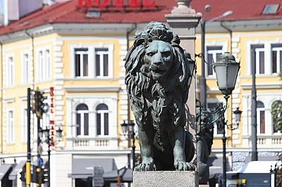 Лято в София: Лъвовете на града
