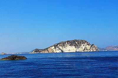 Но за сметка на това успяхме да видим няколко делфина, които плуваха около кораба.
