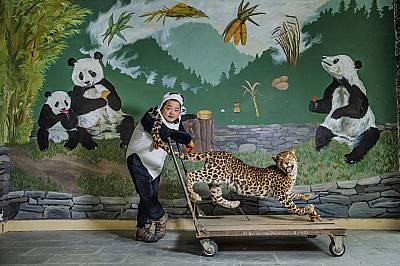 Гао Сияоуен позира с препариран леопард, с който в националния парк учат малките панди да се страхуват от най-големия си естествен враг.