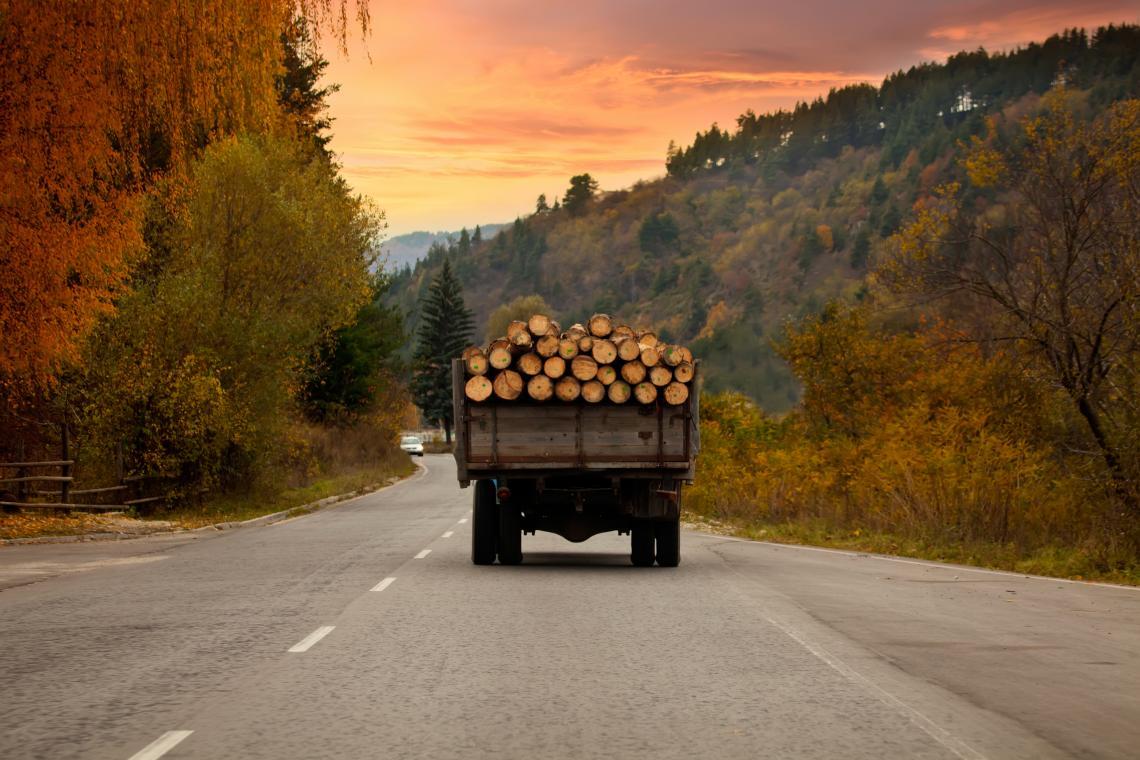 Камион пълен с дървени трупи пътува по българските пътища през есента на 2018 г.